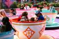 Review of The Disneyland Resort in California