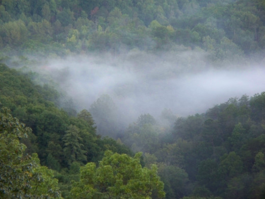 A beautiful view in Great Smoky Mountain National Park