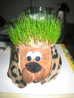 chia pets are earthern figurines that are made for sprouting chia seeds.