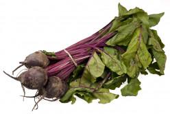 My Mother's Cooking - Fresh Garden Vegetables