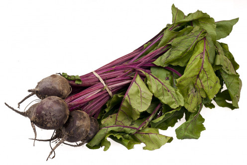 Young Beets