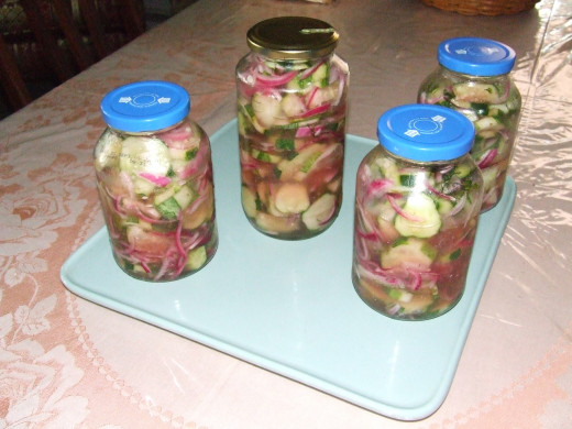 Jarred Pickled Red Onions, Cucumbers and Fresh Dill.