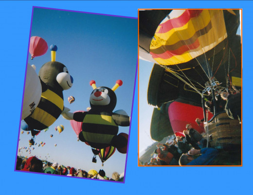 Popular Bee Balloons and how close you can get to the balloons at the Fiesta.