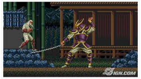 Revenge of Shinobi was a ninja fighting game made for the 16 bit Sega Genesis. Your character has a sword, knives and he gains other weapons as he advances in the game.