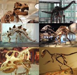 How Did The Dinosaurs Grow So Big?