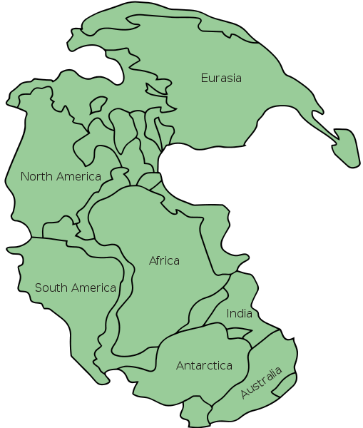 Around 200 million years ago, the great supercontinent known as Pangaea began to break apart , splitting into several continents.