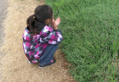 Highly sensitive children are often misunderstood.