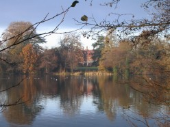 Whiteknights Lake, University of Reading campus, looking across to Foxhill House