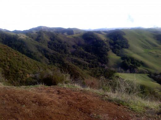 Tha California Countryside
