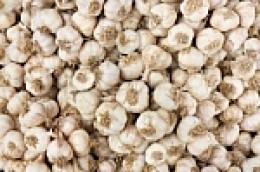 Garlic keeps more than vampires away!