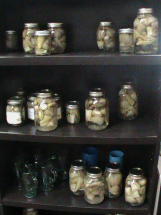 Canned Vegatables on Shelf