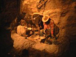 Personal Photo Achives (2010) Life size replica of a Prospector featured as a part of the display at casino entrance.