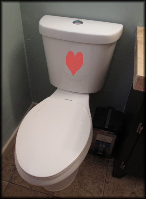 No, really.  I'm in love with my new dual-flush toilet!