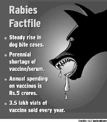 Rabies Factfile: (Photo Credit: http://www.hindu.com/)