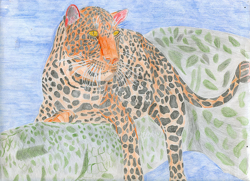 Picture of a leopard I drew using water colored pencils in November of 2007.