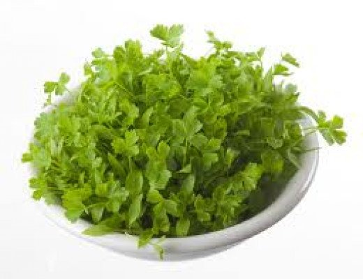 Parsley sprouts