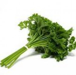 Dry Parsley in small bunches