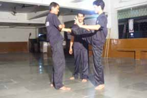 About Wing Chun Kung Fu