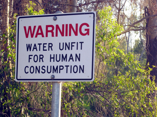 I could show ugly pictures but I already have hubs devoted to showing pollution.  Go look at your local creeks and ponds: Would you drink from them?