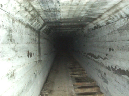 "The infamous ""death tunnel"". This was first used as easy access from the bottom of the hill for employees during cold weather. But as deaths began occuring more frequently,it became a tunnel used to cart the dead away from the living."