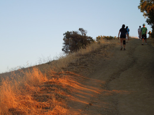 Hiking in Montgomery Hill Park in San Jose CA