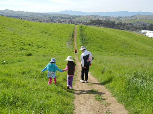 Walking in Montgomery Hill Park San Jose in spring.