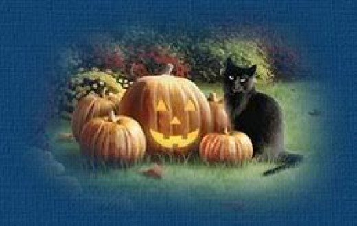 A Black Cat and Halloween