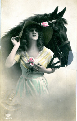 Sentimental Postcards with Horses