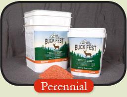 Buck Fest Perennial Deer Plot Seed