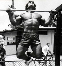 Pull Ups.How many can you do?