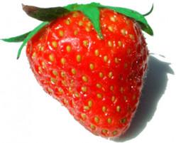 Strawberries Strawberries!  Easy Strawberry Recipes