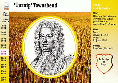 TURNIP TOWNSHEND
