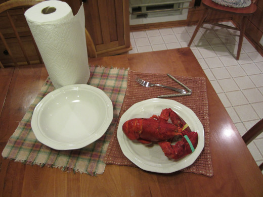 Cooked whole Maine lobster and the tools to help get the shell off.