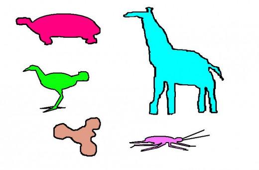 Biomorphic shapes