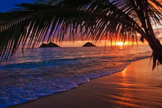 Hawaii Honeymoon Packages