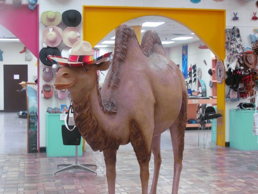 A statue of a camel was displayed in the gift shop at South of the Border.