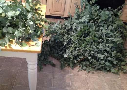 Piles of branches on my kitchen floor, on the table, and still more to come from outside!