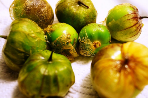 Fresh tomatillos from the garden.  Their papery skin is still attached.