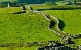Mastiles Lane, an old, bendy drovers' road near Malham that stretches for miles. High limestone stone walls to keep errant cattle going straight ahead
