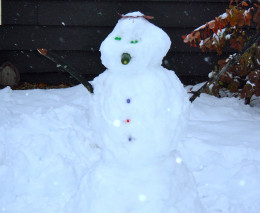 Our snow fellow begins sturdily enough.