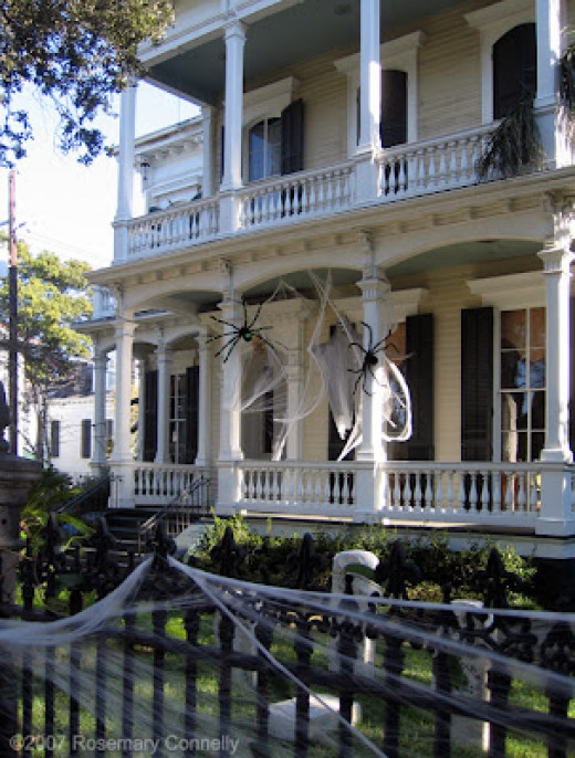 Garden District in New Orleans.  Just webs and black furry spiders.