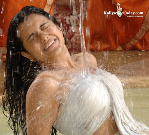 Telugu Spicy Girl Trisha Wet Hot Photos. cute ... bikini compet