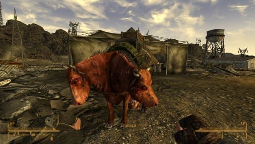 A brahmin - one of the many mutated creatures you'll see in the game.