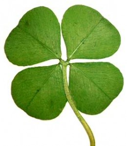 Four Leaf Clover--St. Patrick's Day
