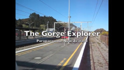 The Gorge Explorer: A Steam Train Excursion in New Zealand