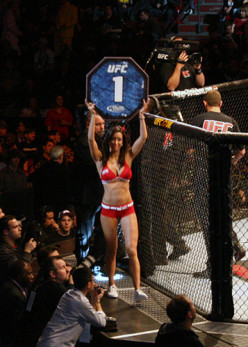 Do you find the 'Ultimate Fighting Championship' entertaining? Or should the UFC be banned?