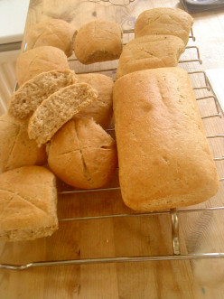 Easy And Healthy Wholemeal Oat Loaf and Rolls Recipe