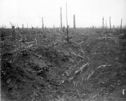 Abandoned German trench in Delville Wood near Longueval, Somme, France during the Battle of the Somme, 1916