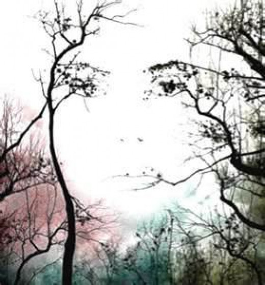 Face in Trees Illusion