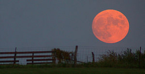 The harvest moon looks unusually big and close to the horizon Photo Credit: Wikipedia